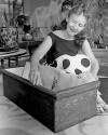 Tucson Time Capsule : Little coffins for critters