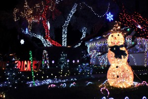 Photos: 2012 Winterhaven Festival of Lights