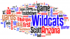 Word cloud: Arizona Wildcats' season at a glance
