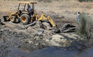 Wildlife to benefit from pond's reconstruction