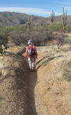 Horses' hooves, erosion turn trails into trenches