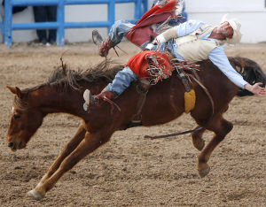 Photos: Highlights from the Tucson Rodeo from Feb. 21, 2014