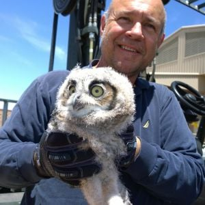 "Airmen blog: Maintainers that give a ""hoot!"""