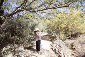 Tohono Chul celebrates National Public Gardens Day