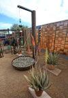 Tucson Botanical Garden Growdown