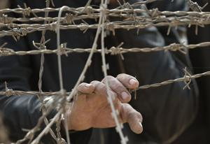 Siria: Muertos en Raqqa suman 95