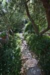 Tucson Botanical Gardens 40th anniversary
