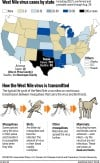 West Nile prevalence in Ariz. is in line with previous years