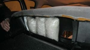 Drug dog foils plan to smuggle meth