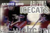 ICECATS: Finality hits hard as ASU roars past Icecats in third