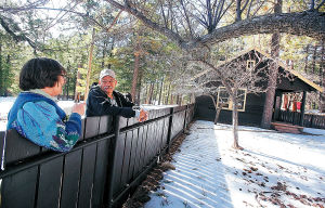 How about your 'own' cabin in the Catalinas' tall pines?