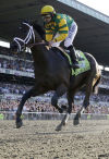 Belmont Stakes Late surge by Palace Malice puts rivals away