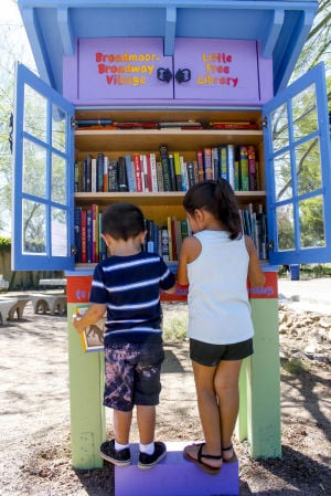 Fun little libraries popping up in Tucson neighborhoods