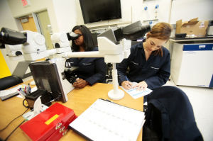 Tucson is urged to seize lead in medical diagnostics