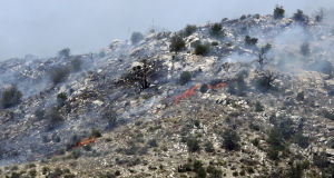 Wildfire in Catalinas grows to 240 acres; highway open