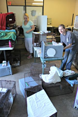 Matching donations sought for trap-neuter-return project