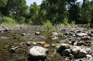 Arizona, 12 other states sue EPA over water rules