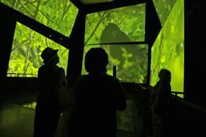 Panamá inaugura museo diseñado por Frank Gehry