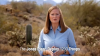 "Screen shot of  Jones' ""Protect the Border"" ad"