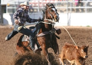 Photos of 2012 Tucson Rodeo