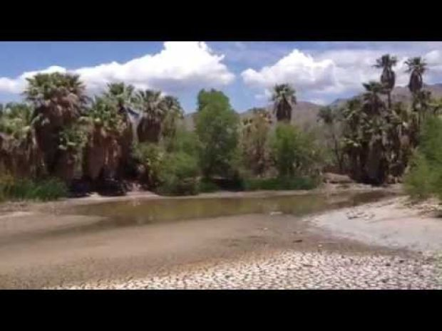 Monsoon doesn't save Agua Caliente