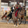 Arabians, riders compete in show of style, skill, beauty