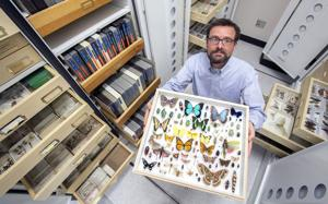 Photos: Entomology Collection