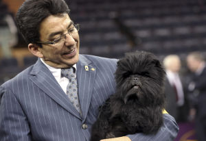 Photos: Westminster Dog Show