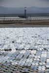 Solar plant scorches birds