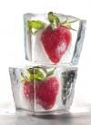Freezing extends shelf life of bountiful berry season