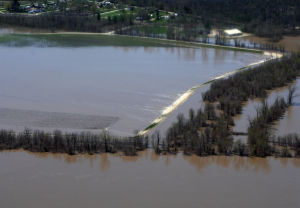 Photos: Mississippi River brings spring flooding