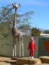 Tucson school gets swiped wooden giraffe back