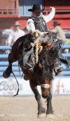 Last go-round in Tucson for retiring Allen