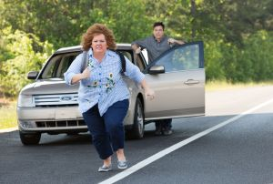 Best to pass on 'Identity Thief'