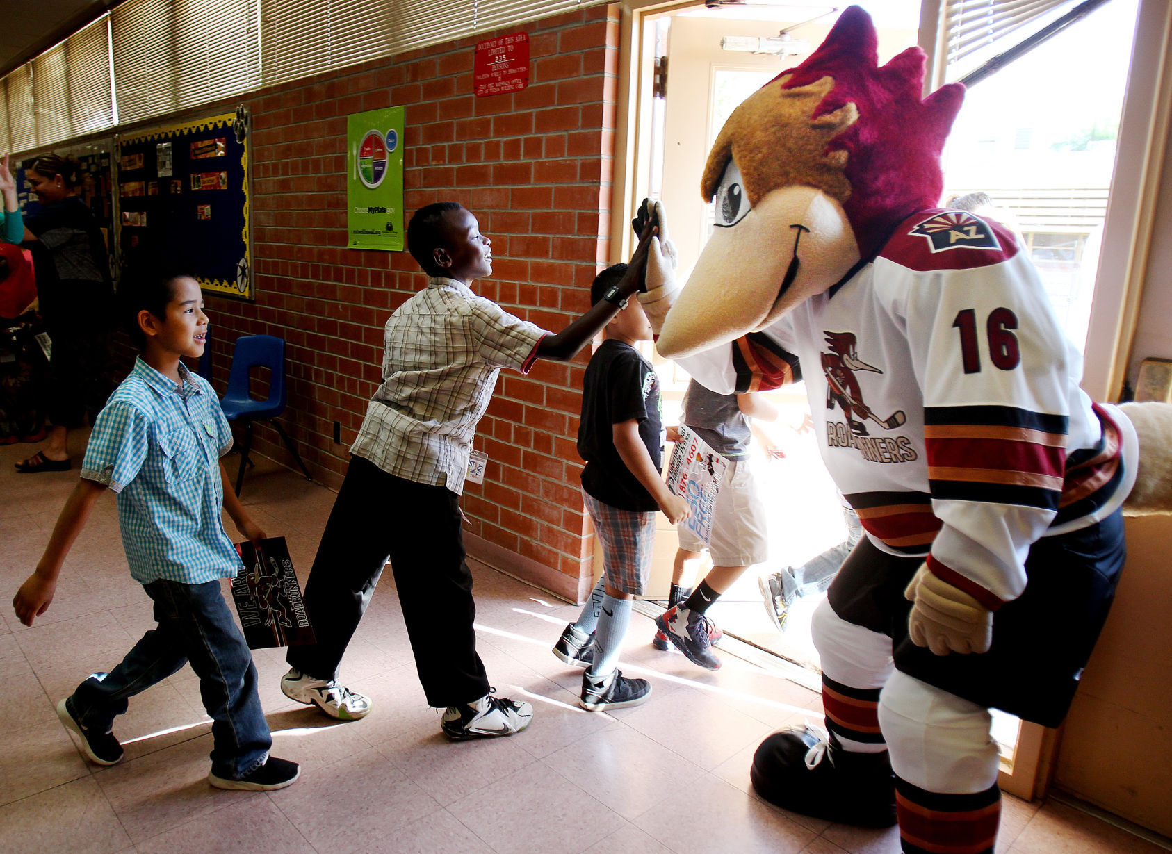 AHL: Tucsonans Ready To Welcome 'newborn' Roadrunners To Town