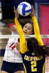 University of Arizona vs Cal volleyball
