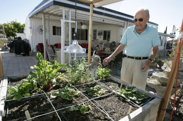 Square Foot Gardens Yield Bumper Crops Home And Garden