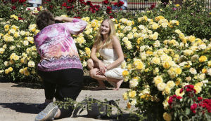 Reid Park's garden wins accolade for its blooming roses