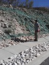 Hydroseeding a steep rocky slope with a native desert seed mix""