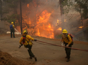 Photos: The Aspen Fire in 2003