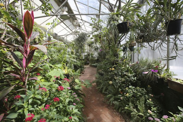 Botanical Gardens Plans Expansion Of Kids 39 Area Foothills