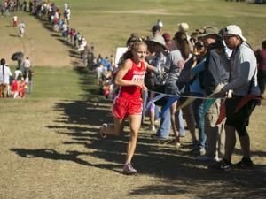 Rio Rico's Schadler named Arizona's girls cross-country runner of the year