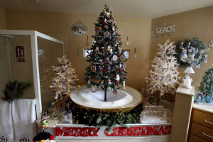 Photos: Couple displays 100 Christmas trees