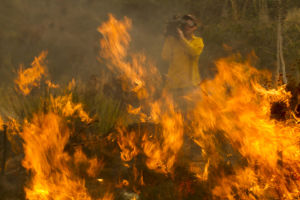 Photos: Camarillo fire in California carves path to sea