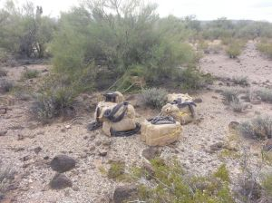 Agents seize smugglers, ATVs, 5,000 lbs of pot