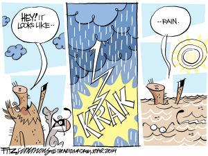 Last Laugh Monsoons