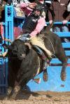 2013 Tucson Rodeo