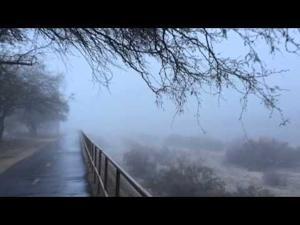 Quick jog through the Tucson fog