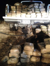 Marco the dog finds truckload of pot in Cochise County