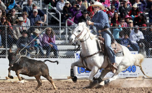 Photos: Tucson Rodeo